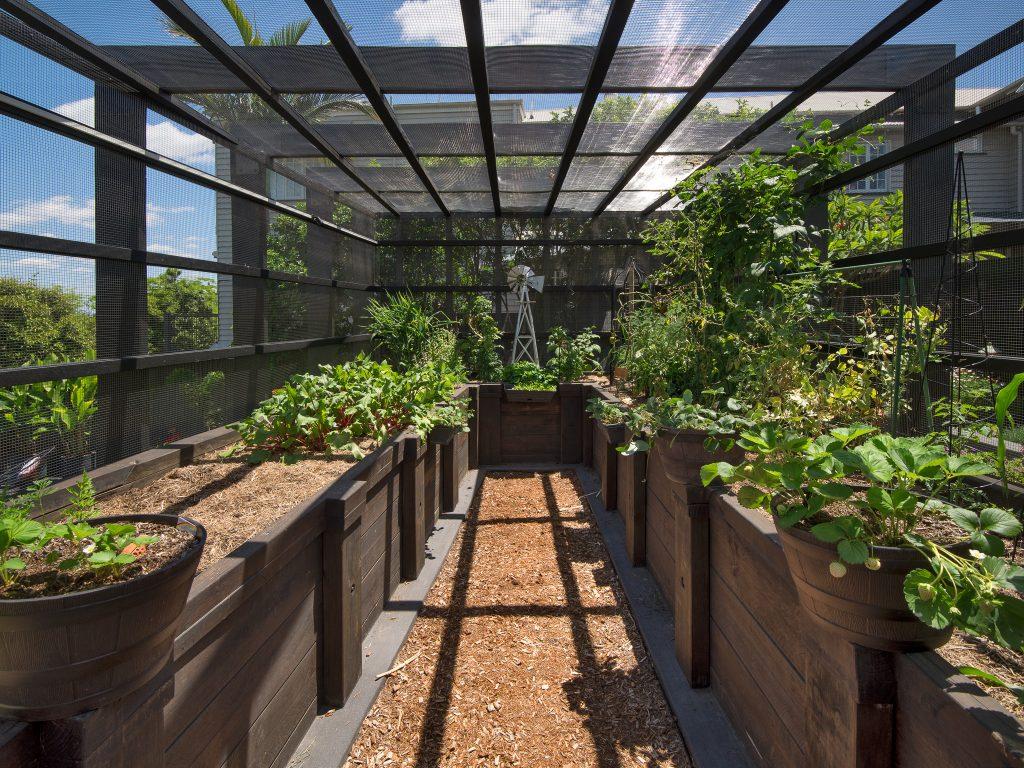 image of renovated hawthorne queenslander vegetable pavilion